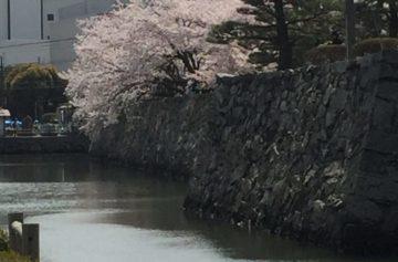 春休み最終日